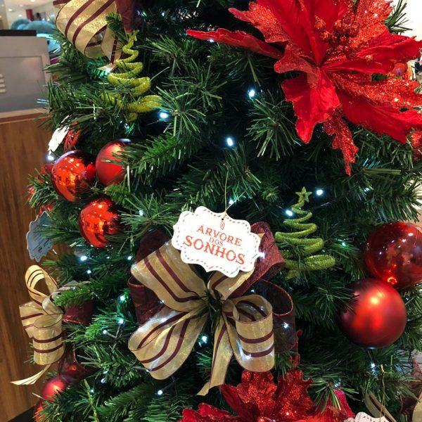 Árvore dos Sonhos: Neumarkt Shopping, Norte Shopping e Instituto Guga Kuerten irão beneficiar mais de 100 crianças neste Natal